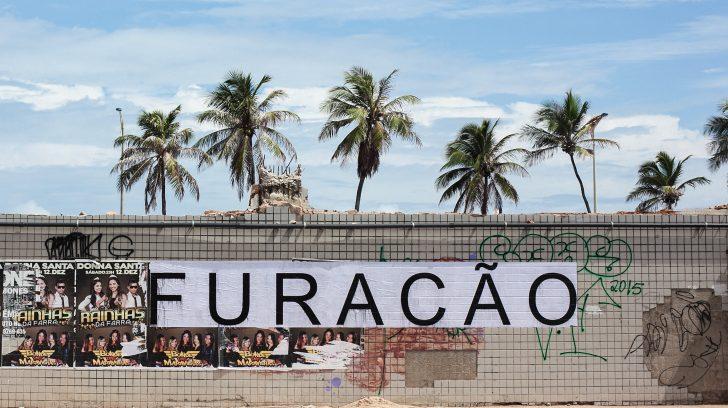 06_Patricia Araujo_Resposta Selvagem 1