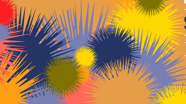 1550857290_pompones (1)