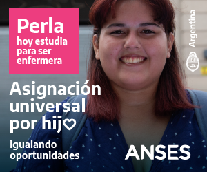 Anses